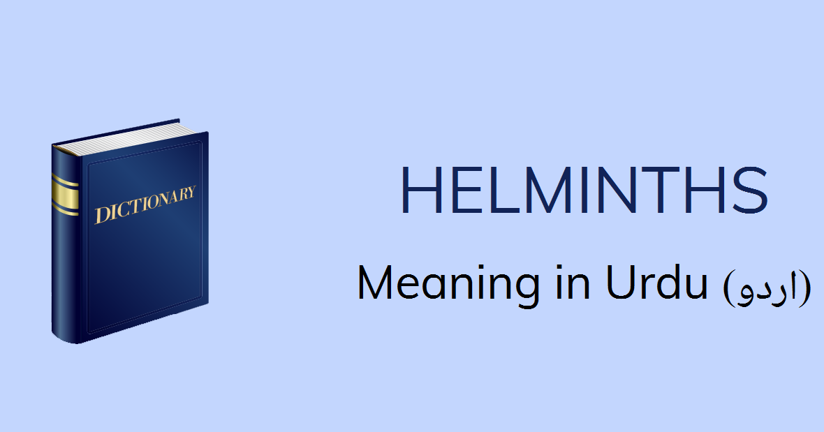 meaning for helminth