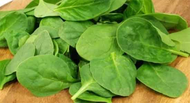 Health Benefits And Nutritional Value Of Spinach Is A Dark Leafy Green Vegetable That Packed With Vitamins Other Nutrients