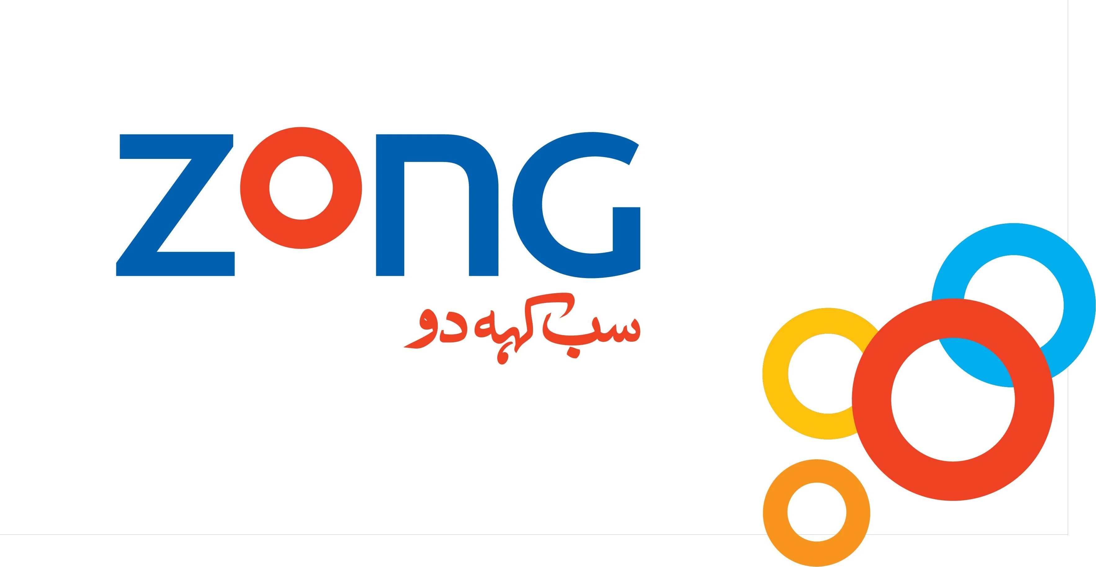 Zong Work From Home offer
