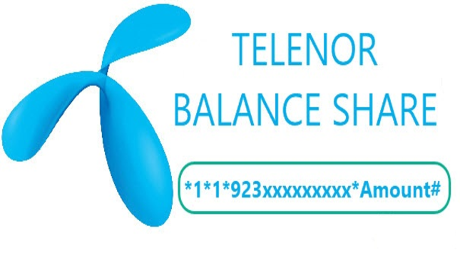 Share balance from Telenor to Telenor