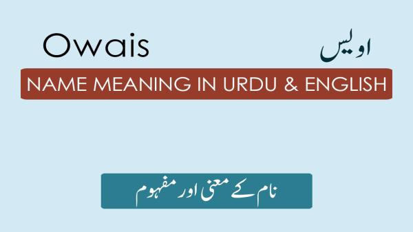 Owais Name Meaning - اویس Origin, Religion & Lucky Number