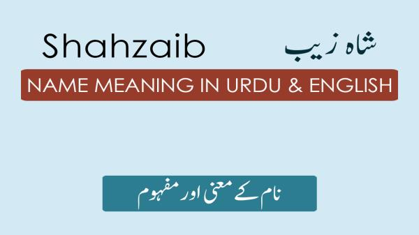 Shahzaib Name Meaning in Urdu - شاہ زیب - Shahzaib Name with
