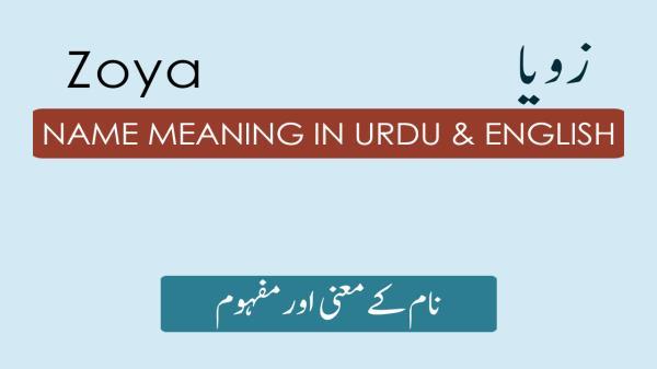 Zoya Name Meaning in Urdu - زویا Muslim Girl Name Meaning