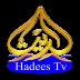Hadees TV
