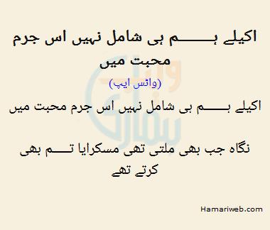 Akele Hum Hi Shamil Nahi The Is Jurm Mohabbat Mein